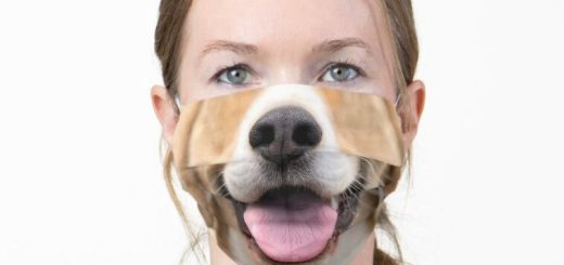 Funny Mouth Photo Cloth Face Masks - Photo Image of Animals and People