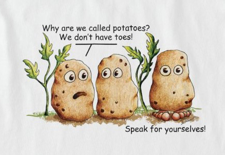 Funny Potato Pun T-Shirt, Shirts, Stickers, and Products