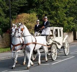 Light Horse Drawn Carriage Uk United Kingdom England North East Co
