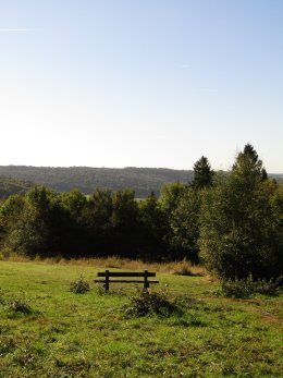 Wendover Woods Review   Wendover   Aylesbury   Buckinghamshire   Free Time with the Kids