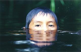 As lágrimas dos curumims enchem barragens…