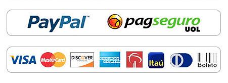 Pagamento seguro com cartão de crédito boleto bancário paypal pagseguro