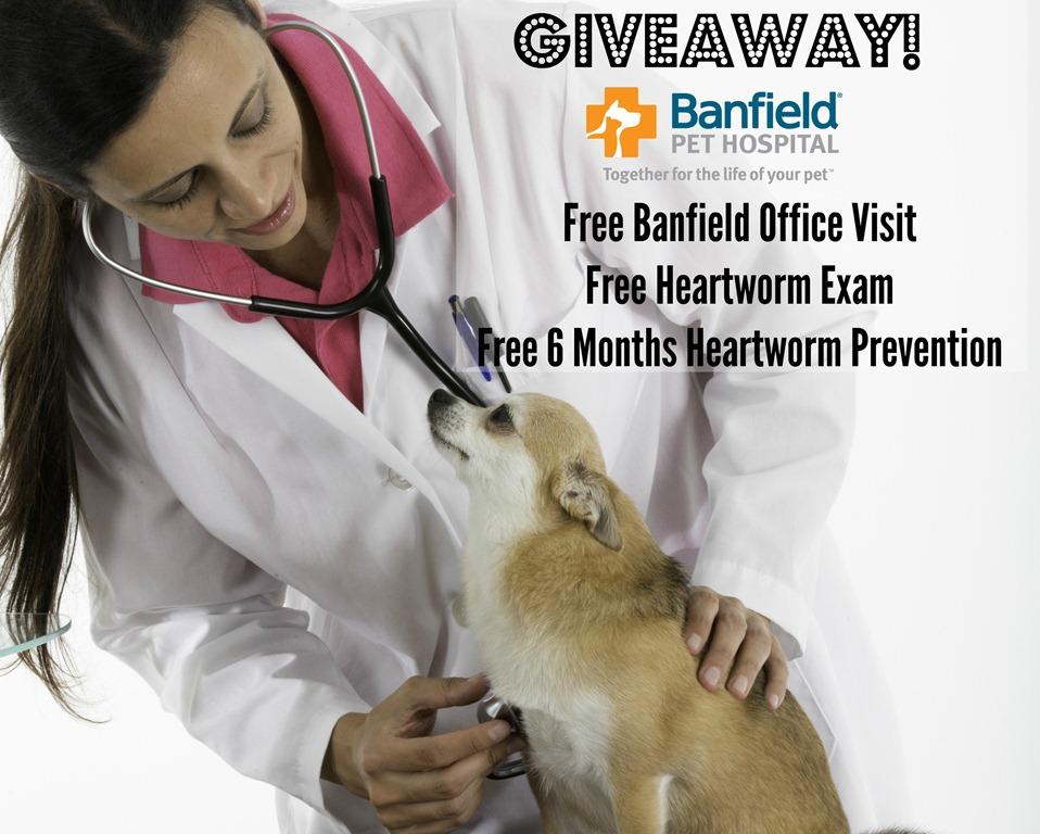 Banfield Pet Hospital Coupons