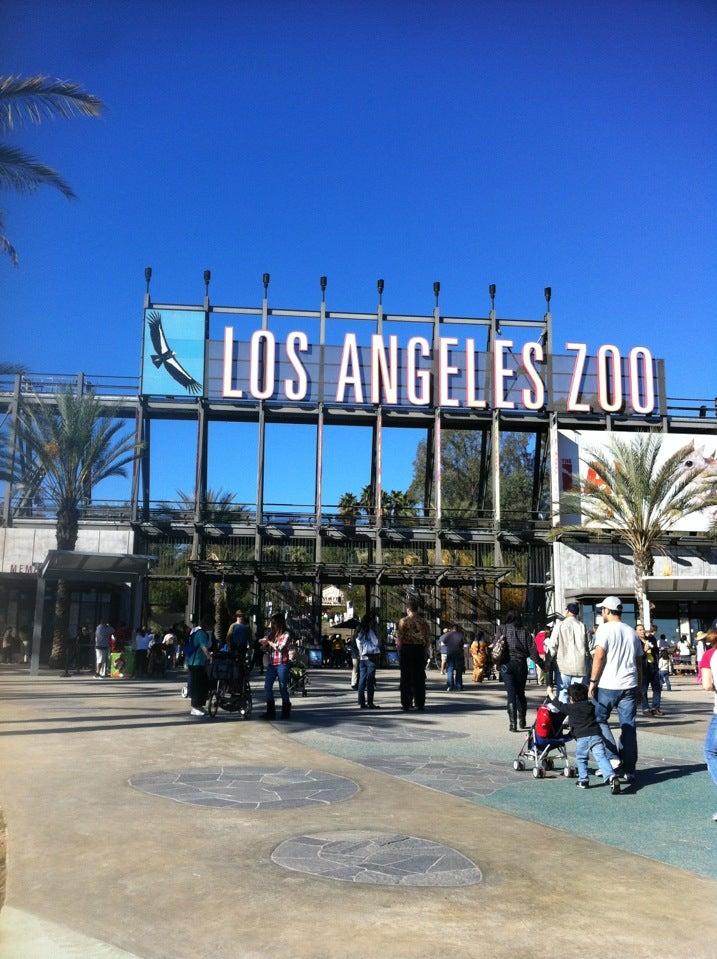 La Zoo Night Lights
