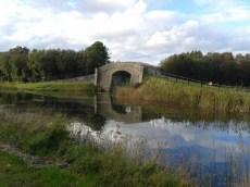 most_pres_vv_45o1