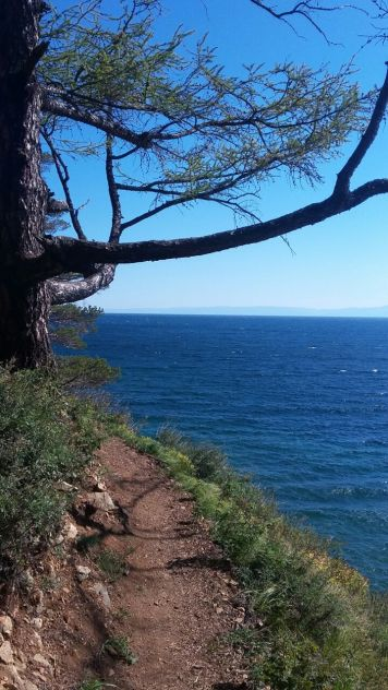 Wanderung am Baikal