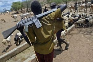 Why Southern Governors' Ban On Open Grazing Isn't Effective In South East - Miyetti-Allah