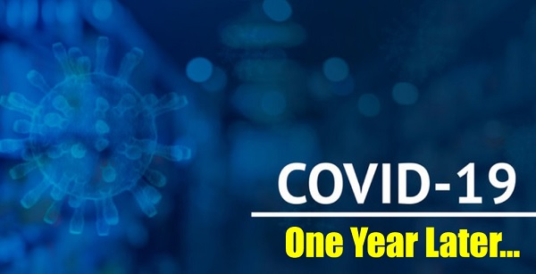 COVID-19 Pandemic: One Year Later