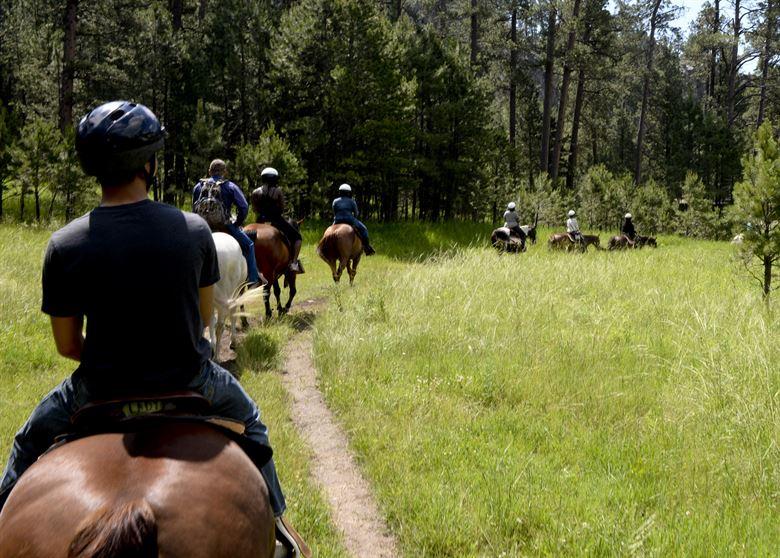Equestrian Ride