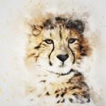 Animal Art I Program
