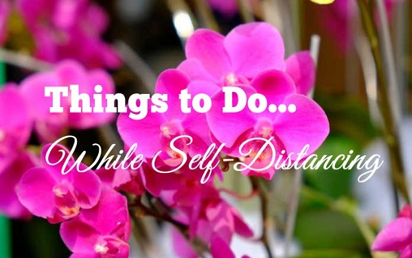 Things To Do While Self-Distancing