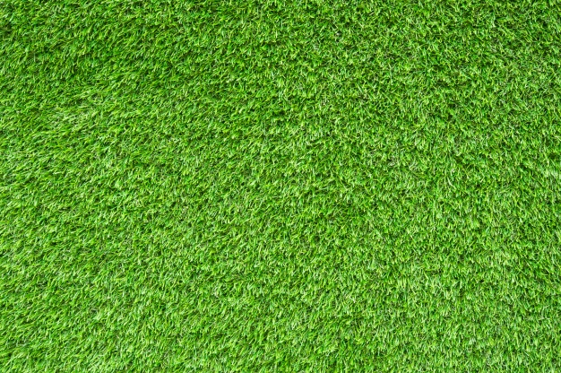SportsWatch — Sports Fields: Artificial Turf vs. Natural Grass