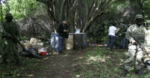 lab ruana