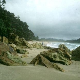 neuseeland-bay-of-islands-warm-strand 2001