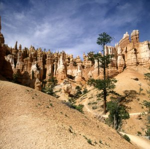 bryce-canyon-totale-unten