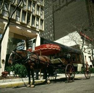 chicago-alte kutsche gehört dazu