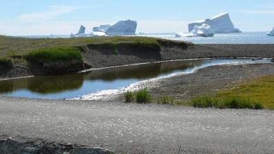 groenland-Eisberge bis ns Ufer 2007