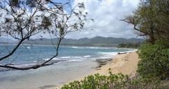 hawaii-endlose strände ohne bebauung 039