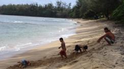 hawaii-vater lässt Kinder spielen40