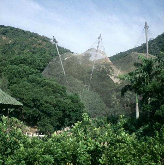 Hongkong-oceanpark -Voliere 1997