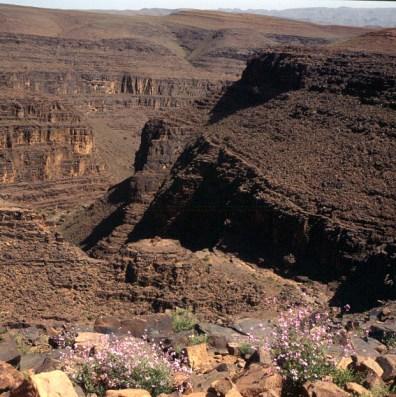 Marokko-Atlasgebirge 1995