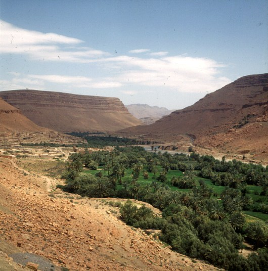 Marokko-Tafilalet 1995