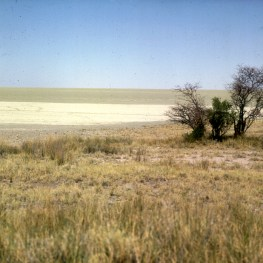 namibia-etoschapfanne-salzsee 1987
