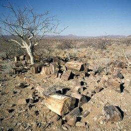 namibia-etoscha-steinholz-1987
