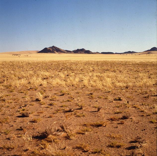 namibia-Kuisibwüste 1987