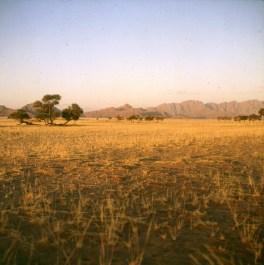 namibia-sossusvlei-campmorgen 1987