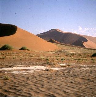 namibia-sossusvlei-duene-anfahrt 1987