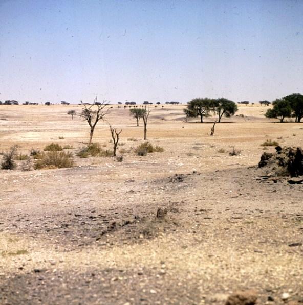 Namibia Fahrt zum Sossusvlei 1987