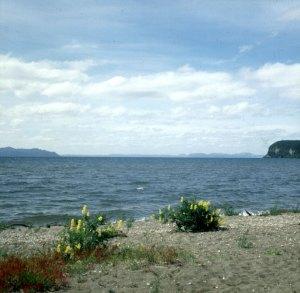 neuseeland rotorua-lake Taupo 2001