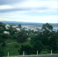 neuseeland-napierhebung 2001