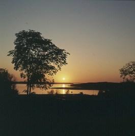 seeland-roskilde-sonnenuntergang