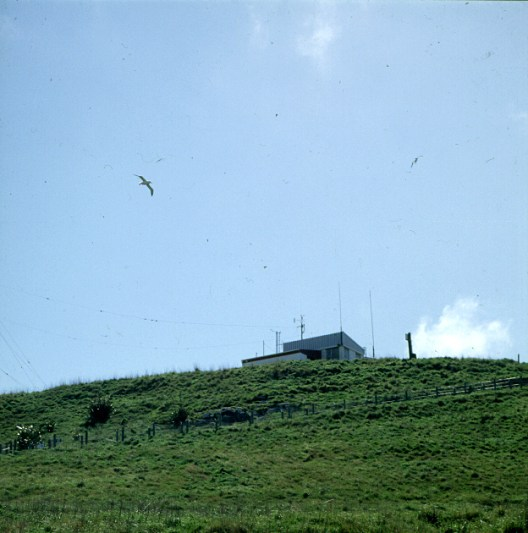 neuseeland--albatrosstation 2001