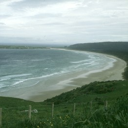 neuseeland-stewart-island- 2001