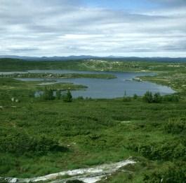 sued-norwegen-fossefjell-2