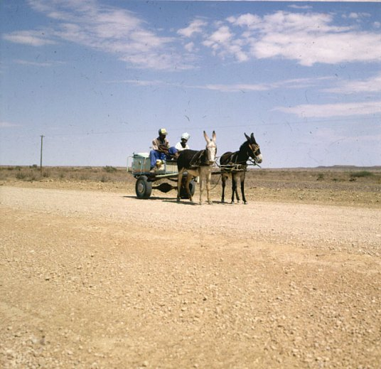 Südafrika-Oranje Autoreifen