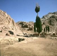 aegypten-sinai-aufstieg horeb-1981