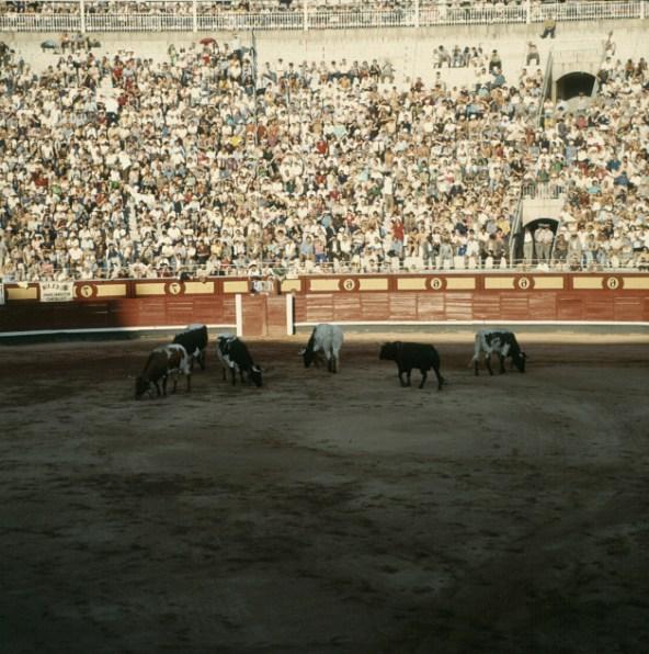 spanien-madrid-stierkampf 1977