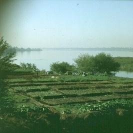 Edfu-Komombo-Assuanersatzland