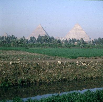 Gizeh-Pyramiden hinter Feldern