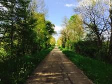 voie-verte-bourgogne