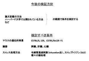 理研CDB STAP検証実験中間報告