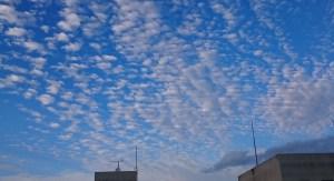 病室の窓から見たうろこ雲