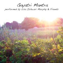 Image result for lisa ishwari murphy cd