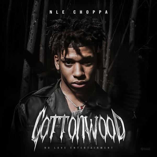 NLE Choppa - Cruze (feat. Meek Mill)