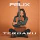 Felix Irwan - Felix Irwan Terbaru