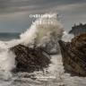 OneRepublic - Wild Life